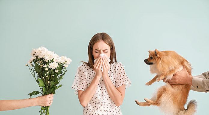 Jakie leki na alergię są dostępne bez recepty i który lek wybrać
